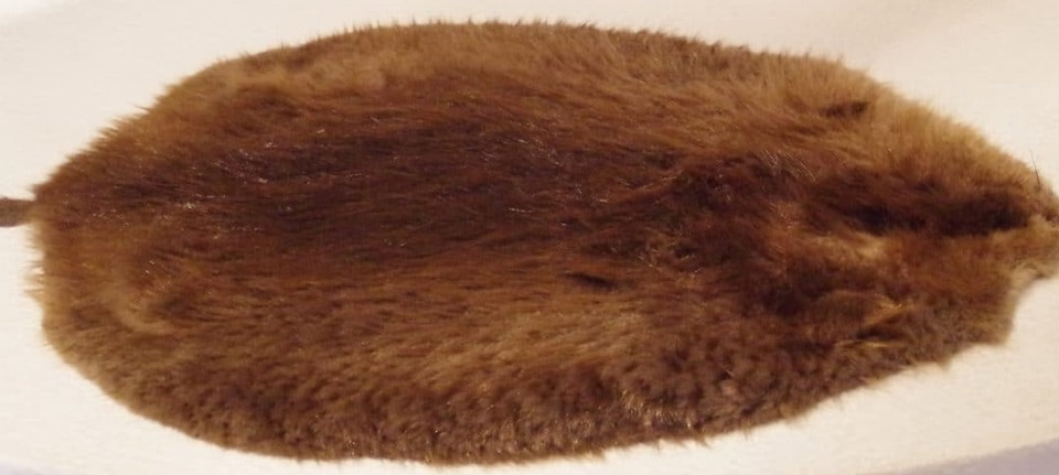 , Your Quick Guide on Fur Fashion, Outdressing