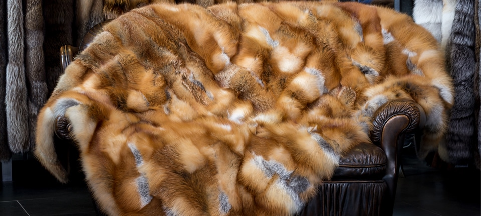 fur fashion, Your Quick Guide on Fur Fashion (Updated 2020), Outdressing